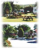 Quantock Orchard Touring Caravan and Camping Park